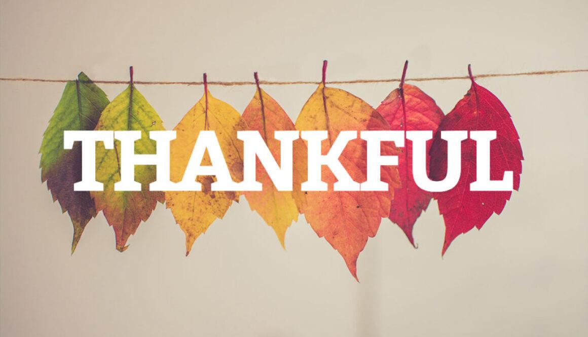 懂得感恩的人生,越活越順