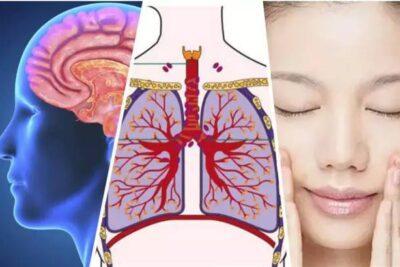 《人体各器官衰老时间表》